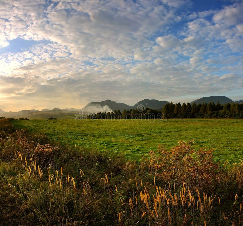Autumn meadows in sunset. With cloudy sky stock image