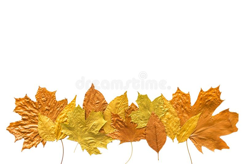 Autumn metallic gold copper silver leaves isolated on white. Different fall metallic paint leaves border frame on white royalty free stock photo