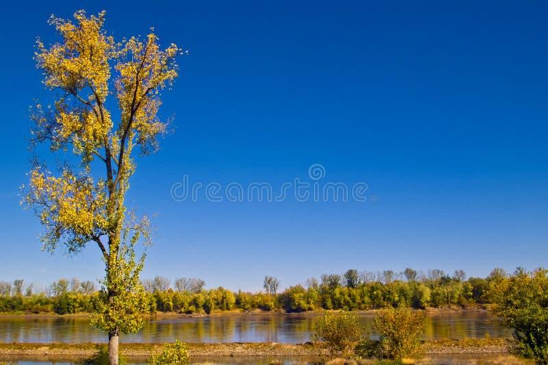 autumn missouri river стоковые изображения