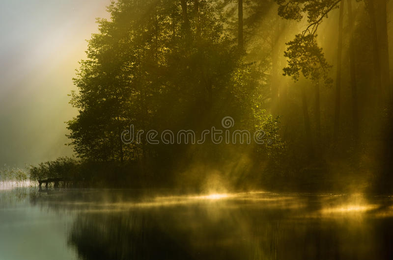 Autumn mist of early morning. And sun beams stock image