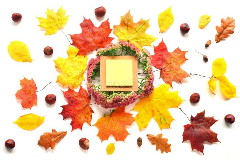 Autumn Mock Up fotografía de archivo