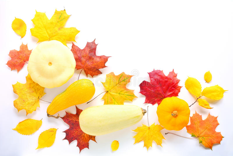 Autumn Mock Up imagenes de archivo