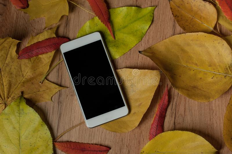 Autumn mock up - white smartphone on a table and yellow leaves. Place for text, your design, presentation website or app. September, october, november sales stock image
