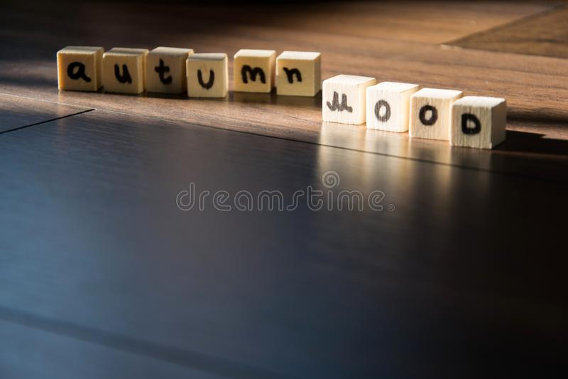 `Autumn mood ` text phrase on wooden background royalty free stock photos