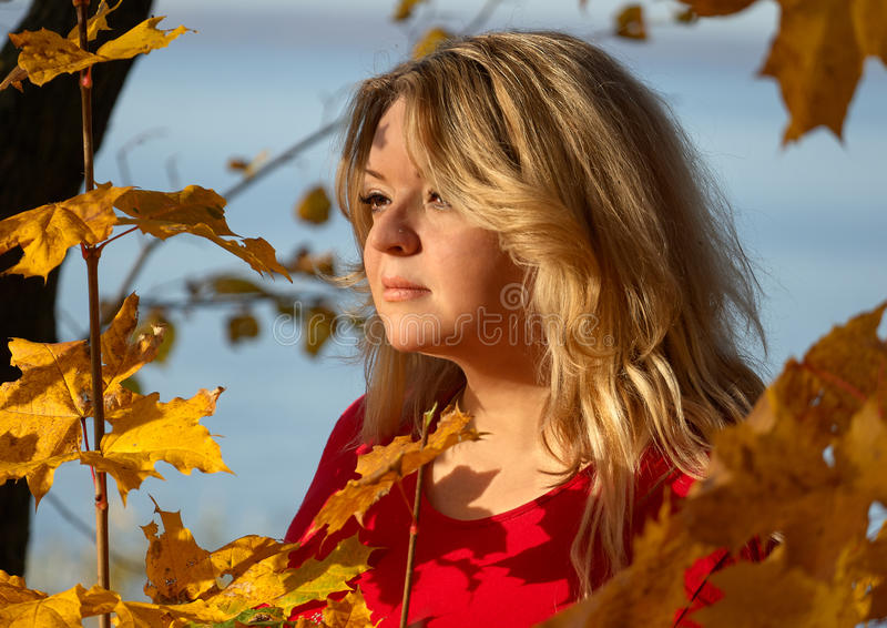 Autumn mood - a woman 35-45 years old in the autumn forest looks towards the setting sun royalty free stock images