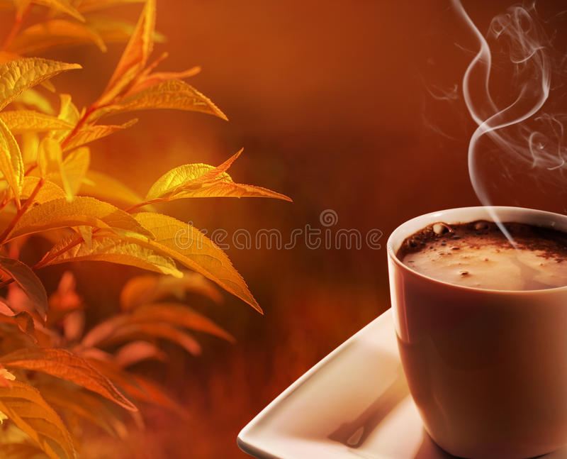 Autumn morning coffee. Autumn morning cup of hot coffee stock image