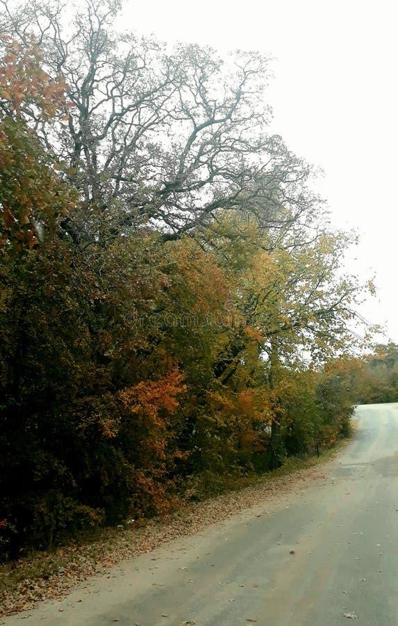 An Autumn morning drive stock photos