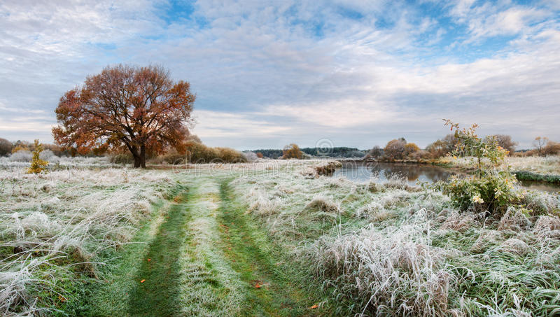 Belarus.Autumn Morning Landscape With First Frost On Green Grass, Yellow Lonely Oak And Small River.Panorama With Frosty Grass royalty free stock photography