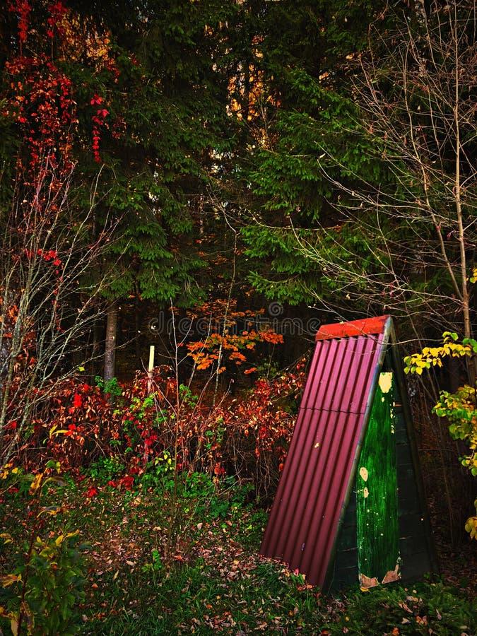 Autumn morning leaves trees toilet. Lazy Monday morning stock image