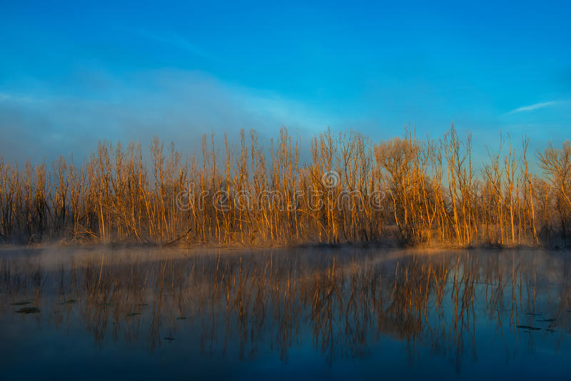 Autumn morning. Misty autumn morning on the river on a sunny day stock photos