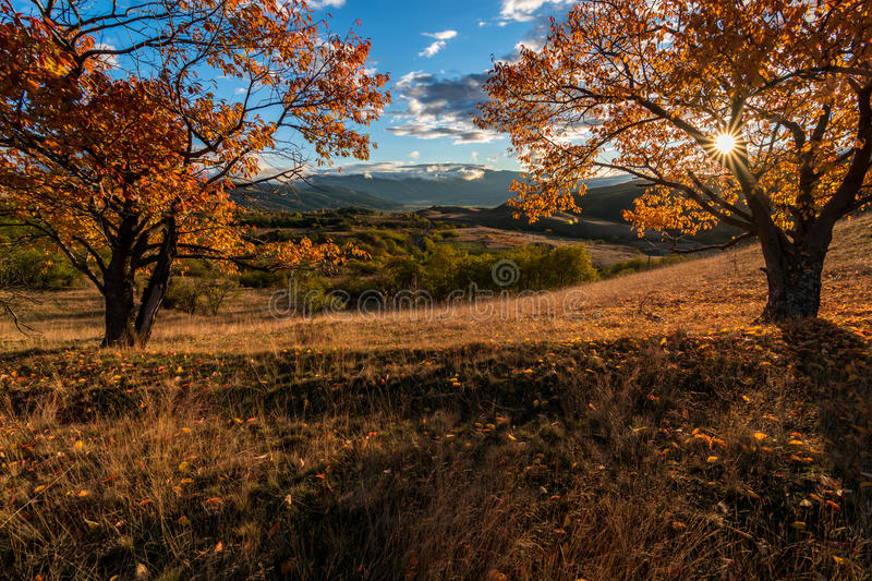 Autumn morning in the mountains royalty free stock photography