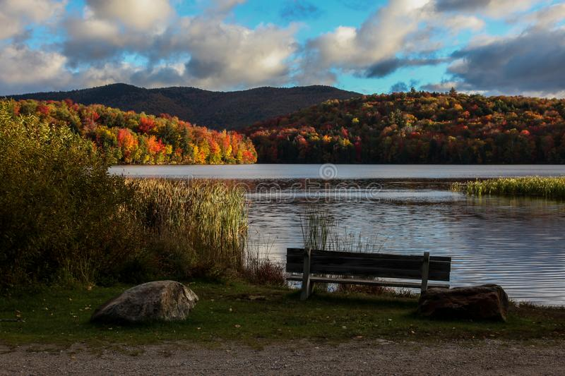 Autumn morning near water royalty free stock photography