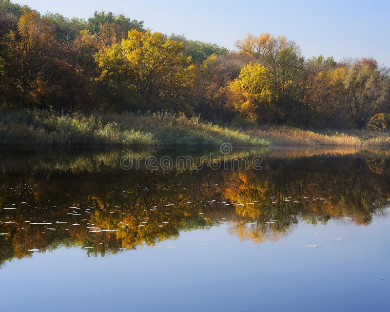 Autumn morning. Reflected in the river shore autumn morning royalty free stock photos