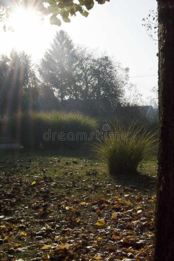 Autumn Morning In The Village. royalty free stock photography