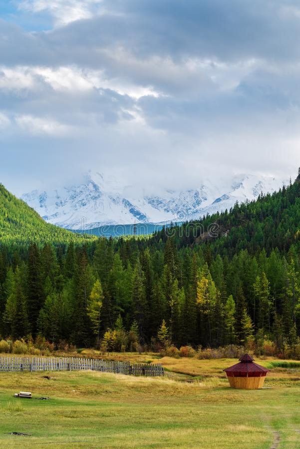 Autumn mountain landscape with forest and snowy mountain range royalty free stock images