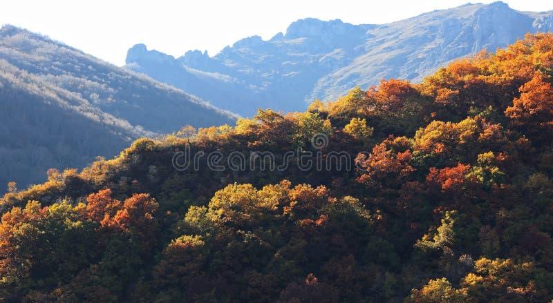 Autumn in the mountain stock photos