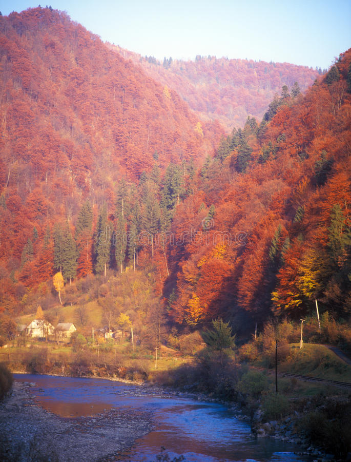 Download Autumn in mountains. stock image. Image of fall, ukraine - 22372679