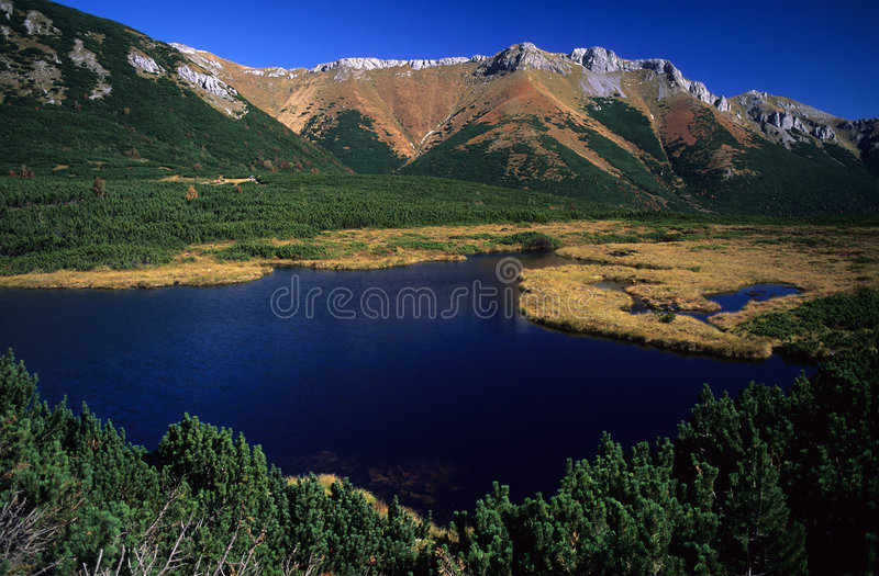 Autumn mountains. Beler Tatra mountains in autumn,Trojrohe pleso, Western Carpathians, Slovakia royalty free stock photography