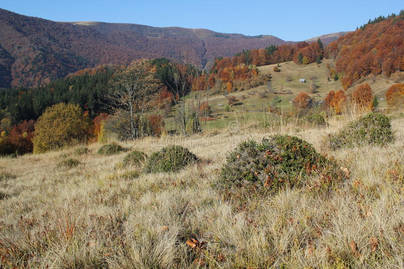 Autumn in the mountains (array Svidovets in Ukrainian Carpathian Mountains) royalty free stock photography