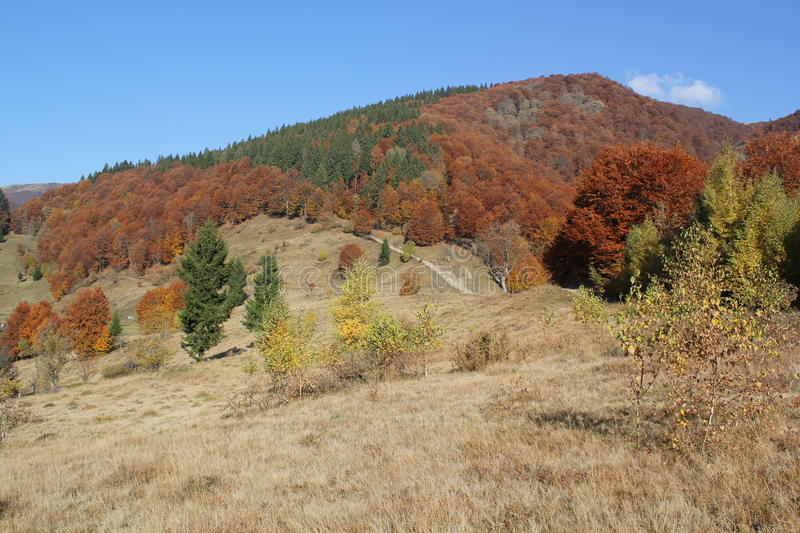 Autumn in the mountains (array Svidovets in Ukrainian Carpathian Mountains) royalty free stock photo