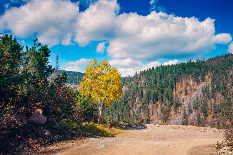Autumn in the mountains Miao Chan. Golden September in the mountains royalty free stock photos