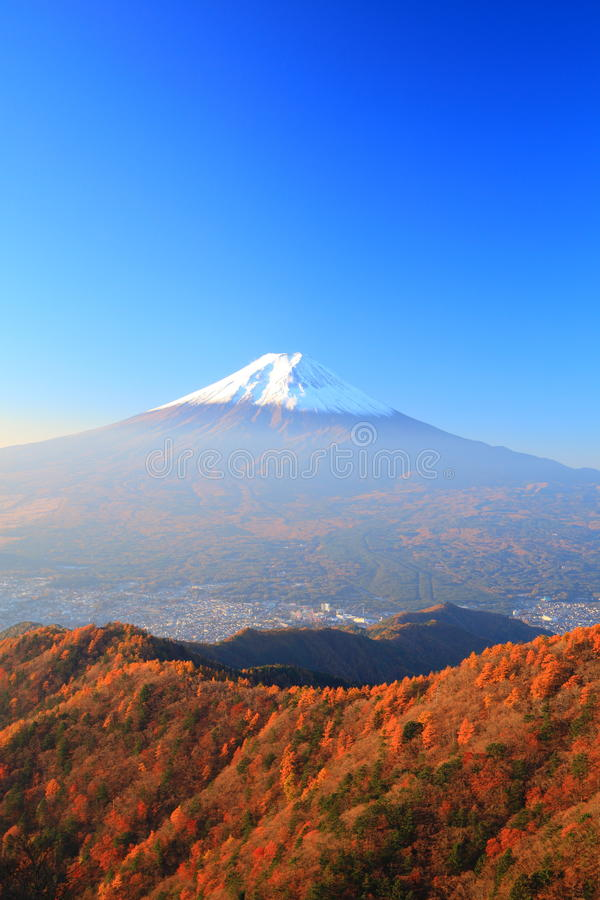 Autumn Mt. Fuji stockfotos