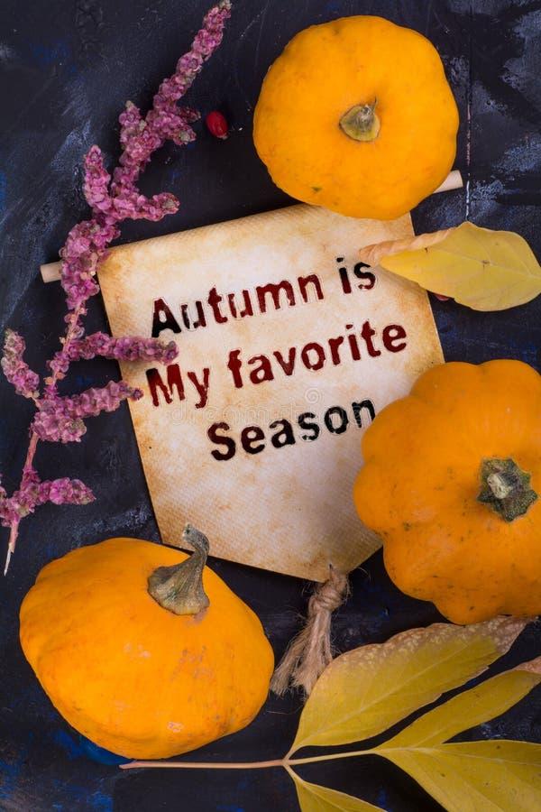 Autumn is my favorite season stock images