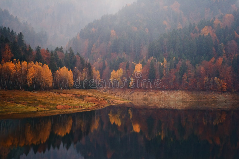 Autumn fog. Autumn myst and colorful landscape stock images