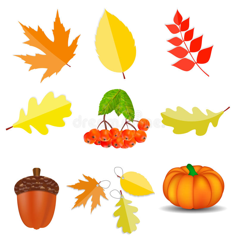 Autumn Natural Icons Vetora Illustration brilhante ilustração stock