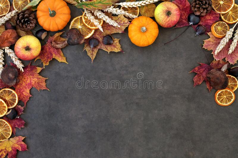 Autumn Nature Background Border. With food, flora and fauna on lokta paper background. Top view. Harvest festival theme stock photos