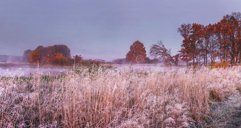 Autumn nature landscape in november. Panoramic view on meadow and trees covered hoarfrost. Fall. Scenery of Autumn morning. royalty free stock photography