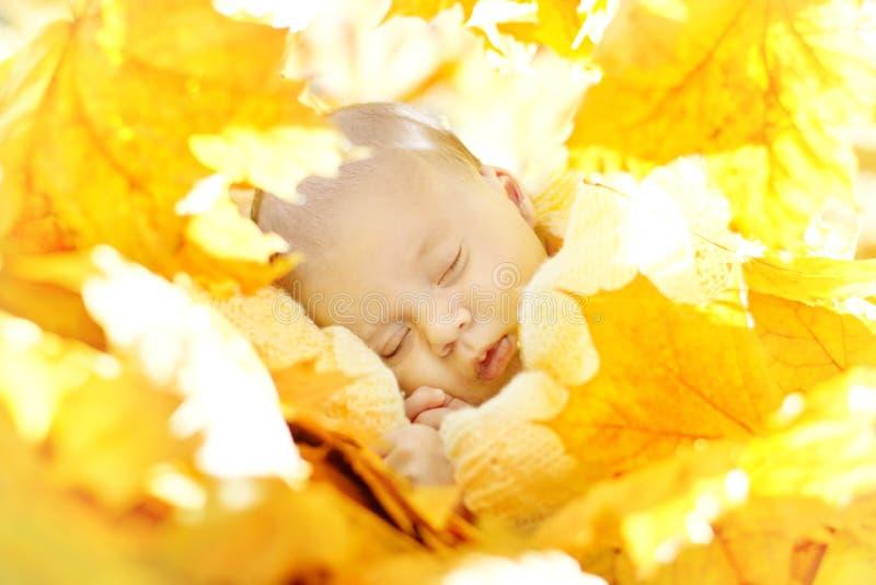 Autumn Newborn Baby Sleeping nas folhas do amarelo, criança recém-nascida imagem de stock royalty free