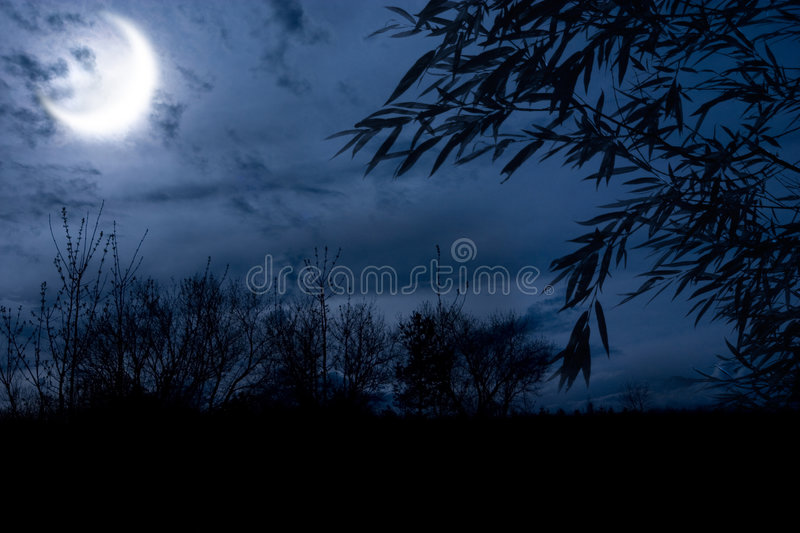 Autumn night stock photos