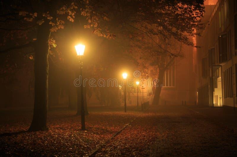 Autumn night royalty free stock photo