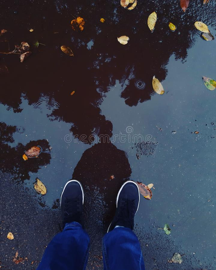 Autumn is not only sadness but also a search for yourself royalty free stock photography