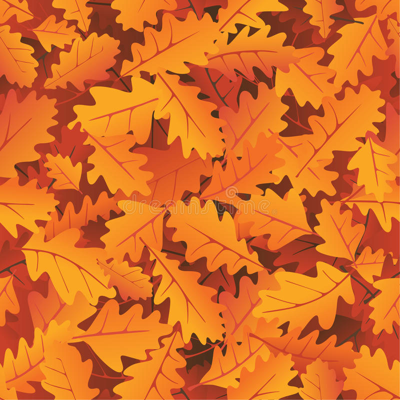 Autumn oak leaves stock illustration