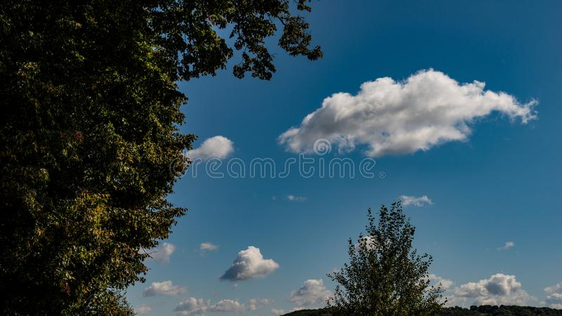 Autumn October Deciduous Forest no fundo do céu azul e nas nuvens brancas fotos de stock royalty free