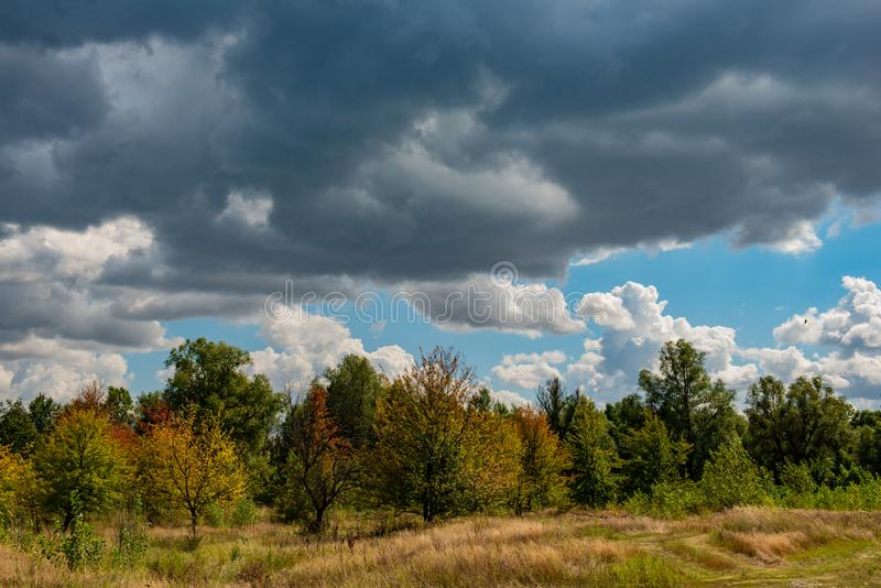 Autumn October Deciduous Forest no fundo do céu azul e nas nuvens brancas imagens de stock royalty free