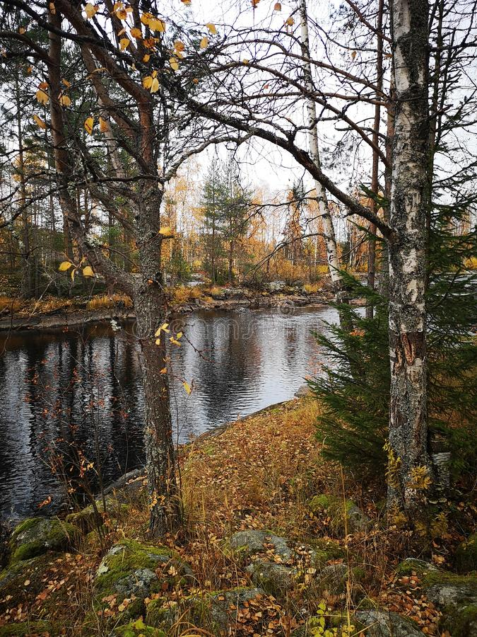 Autumn october Finland nature colorful royalty free stock image