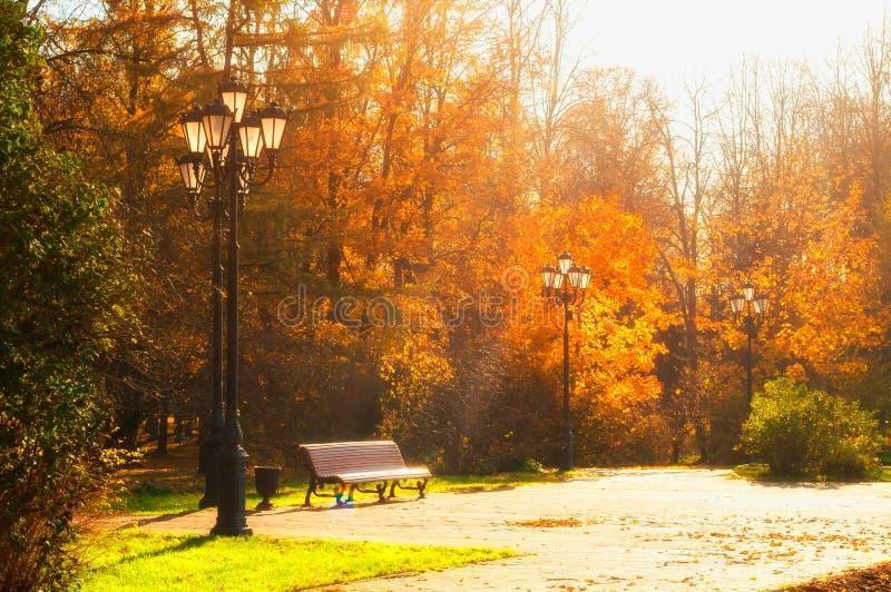 Autumn October-Landschaft Bank am Herbstpark unter bunten Laubbäumen - sonnige Herbstansicht stockbilder
