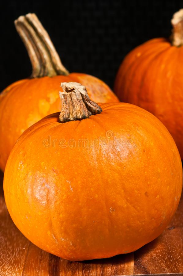 Autumn Oktoberfest pumpkin decorations stock photo