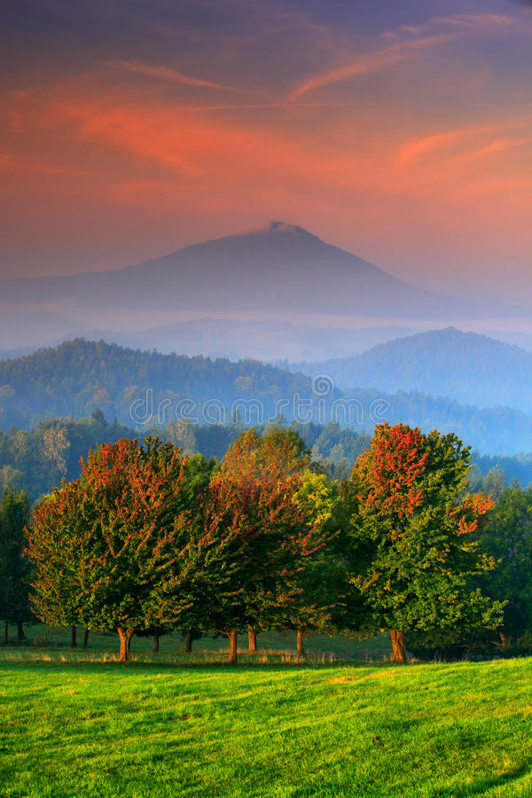 Autumn orange colour on the tree. Cold misty foggy morning in a fall valley of Bohemian Switzerland park. Hills with fog. Landscape in Czech republic royalty free stock photos