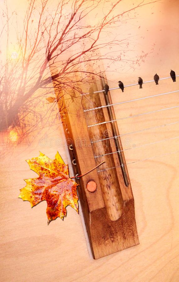 Free Autumn Orange Musical Mood Stock Image - 129659121