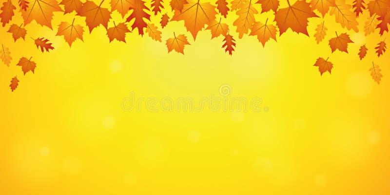 Autumn orange and yellow falling leaves on yellow background stock illustration