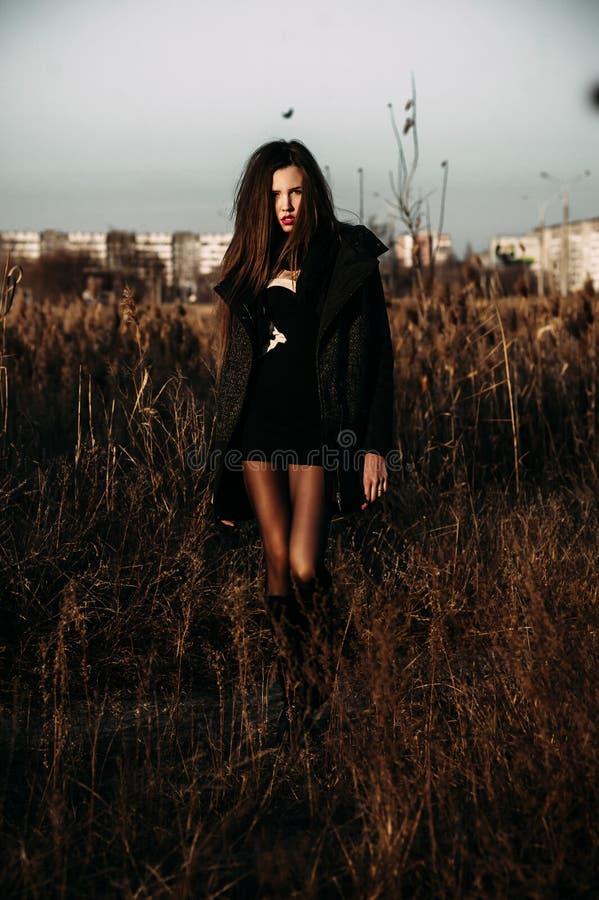 Autumn outdoor porttrait of young pretty elegant girl posing . royalty free stock photos