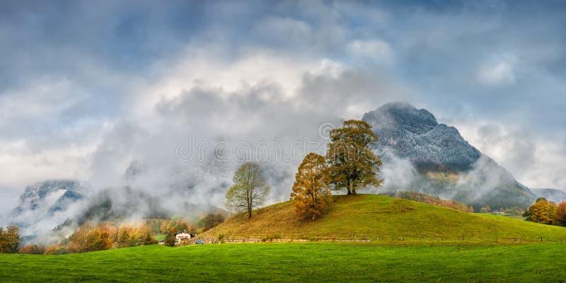 Autumn Panorama met Bomen en Berg royalty-vrije stock fotografie