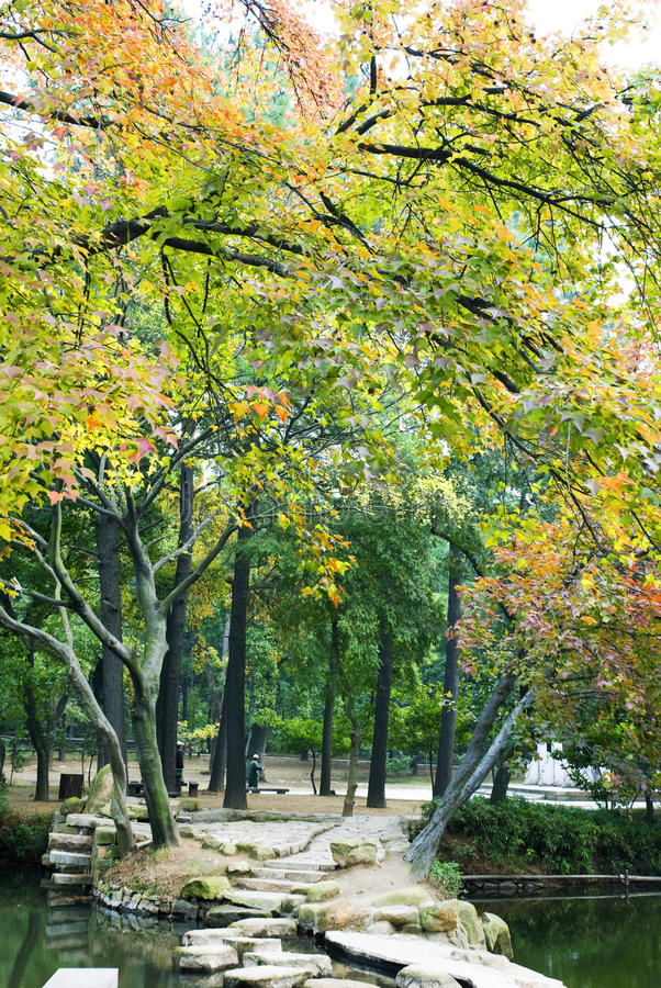Download Autumn park stock image. Image of autumn, colorful, surroundings - 13107623