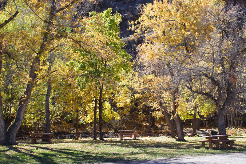 Download Autumn In The Park Royalty Free Stock Photos - Image: 1402988