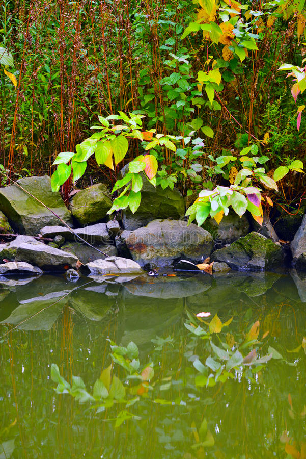 Download Autumn in the park stock photo. Image of lake, water - 27127750
