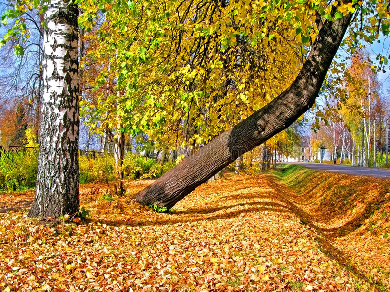 Download Autumn Park Royalty Free Stock Photo - Image: 6955285